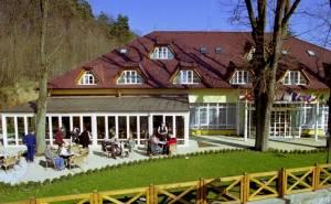 hotel-wellness-v-kupelnom-meste-trencianske-teplice_25_1_window
